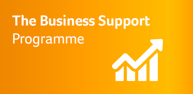 The Business Support Programme