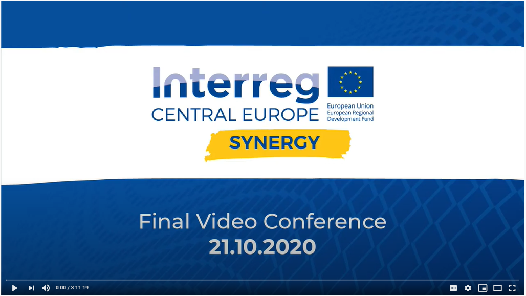 SYNERGY Final Video Conference; Image Source: SYNERGY Project