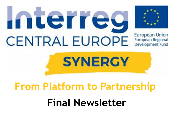 SYNERGY Final Newsletter; Image Source: SYNERGY Project