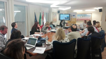 4th Project meeting, Torino_1