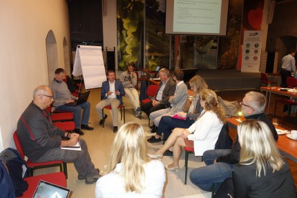 Stakeholder involvement in Czech republic