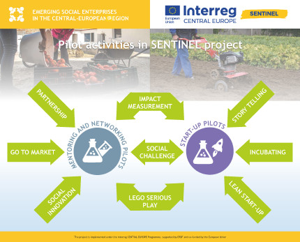 Pilot activities in SENTINEL project, infographics 5th