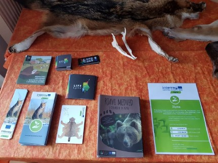 Information about large carnivores from different projects (3Lynx, LIFE Lynx and LIFE DINALP BEAR). Photo: Maja Sever, 3Lynx