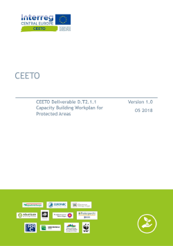 CEETO-Capacity-Building-Workplan
