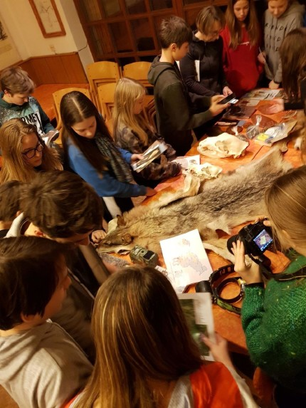School children were very interested in large carnivores. Photo: Maja Sever, 3Lynx