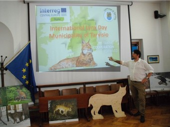 Lynx day 2019 in Tarvisio