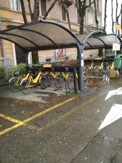 Study visit in Modena - Bike sharing system