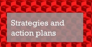 Strategies and action plans