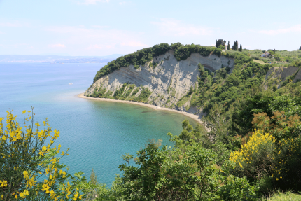 Cliffs at Strunjan Landscape Park