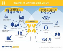 Benefits of SENTINEL pilot actions
